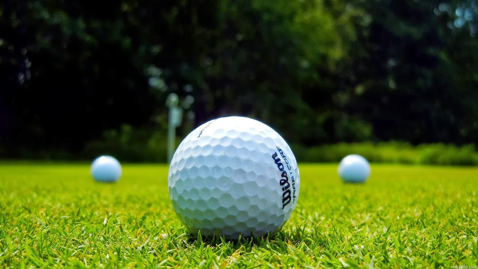 Bóng golf là phụ kiện golf cần thiết khi chơi golf
