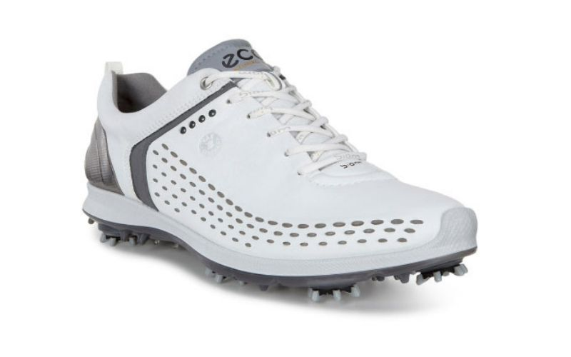 Men's Golf Biom G 2 là một mẫu giày bền bỉ và rất dễ thích ứng với thời tiết