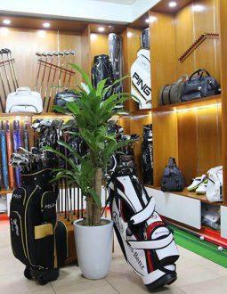 Mua quần áo golf ở đâu? 6 cửa hàng uy tín tại Hà Nội và TP Hồ Chí Minh
