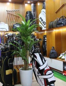 Hệ thống cung cấp vô số các sản phẩm gậy và phụ kiện golf chính hãng