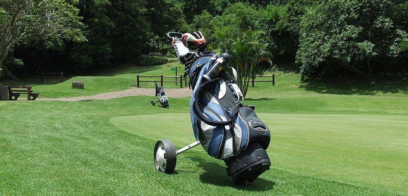Hình ảnh mẫu túi golf Mizuno dạng xe đẩy
