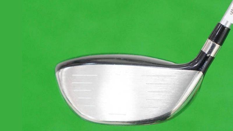 Bộ gậy rất thích hợp vớ những golfer mới hoặc golfer có thể lực trung bình