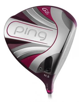 Bộ gậy Ping Gle2