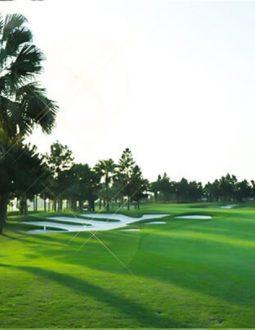 Review Chi Tiết Sân Golf Đầm Vạc: Địa Chỉ, Dịch Vụ, Bảng Giá Chơi Golf