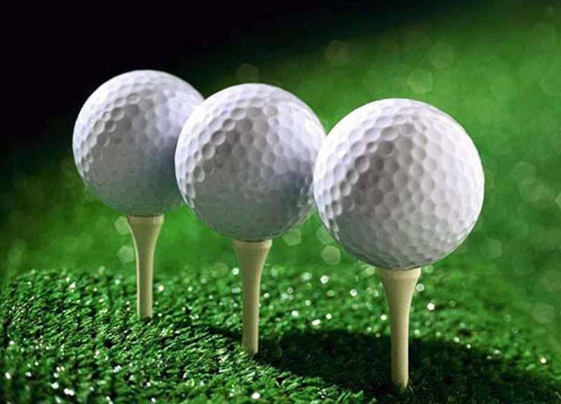 Bóng golf 2 lớp là loại bóng khá phổ biến với các golf thủ